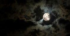 L'influenza della luna sulla natura e su di noi tra credenze popolari e realta'