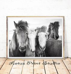 Horse Print, Horse Decor, Large Horse Poster Print, Digital Download, Wall Decor, Black and White Photography, Printable Wall Art,  #309