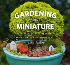 Create Your Very Own Miniature Garden with the best book on the subject by Janit Calvo. You can buy the book at our shop. http://www.naturalartgardencenter.com