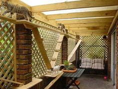 Dream patio for the cats. :)  Would have to build railings so I wouldn't worry when they're senior citizens.