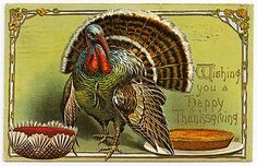 Free Printable Vintage Thanksgiving Post Cards from my personal collection