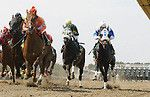 Parx Racing Selections & Plays for 9/20(Pennsylvania Derby Day) $2.75