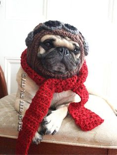 All You Need Is Pug shop on Etsy - This chick will knit you and your dog matching hats - nuff said. I want the The Red Baron - Dog Hat and Scarf Set The Animals, Funny Animals, Cute Pugs, Cute Puppies, Pug Love, I Love Dogs, Pet Shop, Hat And Scarf Sets, Best Dogs