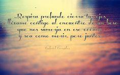 Fragmento de Índigo Por Gabriel González Blog Memorias de Amor y Olvido