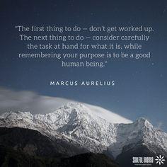 80 Best Marcus Aurelius Quotes Images Marcus Aurelius Quotes