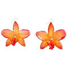 Real Orchid Earrings II Orchid Treasures Australia