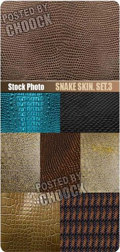 Snake skin. Set.3 - Stock Photo 8 jpg | Up to 8700*6526 pix | 300 dpi | 157 Mb rar