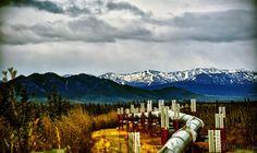 ITAP of the Trans-Alaskan Pipeline from the Dalton Highway http://ift.tt/2bYgfuP
