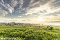 #hohenrain #switzerland Switzerland, Vineyard, Explore, Landscape, Outdoor, Outdoors, Vine Yard, Scenery, Landscape Paintings