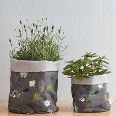 Spring Ivy - Blue plant pots by Lorna Syson Blue Plants, Ivy Plants, Potted Plants, Ivy Plant Indoor, Kitchen Herbs, Fabric Birds, Plant Pots, Modern Design, Floral Design