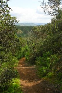 Explore: Best San Diego Hiking Trails - DiscoverSD.com
