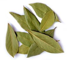 bobkovy list, očista kloubů