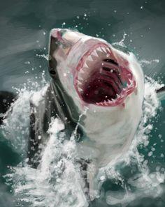 """Shark"" Digital Study"