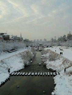 Snowy bulgwangcheon
