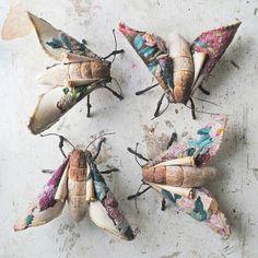 跟一般手縫布偶不同,Mister Finch的動物縫紉像雕塑般真實又立體,放在床上可能會以為真的有隻蛾睡在自己床上咧!