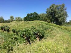 26 mei 2017 - Fort Altena en omgeving van het Biesboschmuseum in Werkendan.