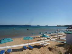 Kypri Beach. Patio, Beach, Outdoor Decor, Yard, Terrace, The Beach