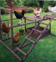 Raising Chicken Tips: Requirements for Building a Coop A coop is what you normally call a chicken´s house. Chicken Garden, Backyard Chicken Coops, Chicken Coop Plans, Building A Chicken Coop, Diy Chicken Coop, Backyard Farming, Chickens Backyard, Homemade Chicken Waterer, Backyard Ideas