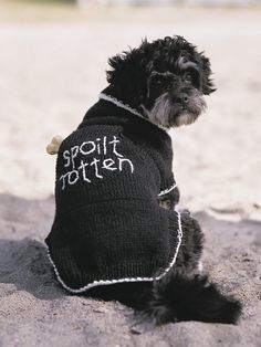 PATONS KNITTING PATTERNS FOR DOG COATS   KNITTING PATTERN