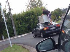 Seen on r/newzealand #forklift #osha #forkliftlicense #forklifttraining #forkliftcertification #forkliftlabs #safety