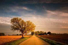 Love dirt roads