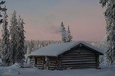 Manto-oja Open Wilderness Hut in Urho Kekkonen National Park. Finnish Language, Natural Resources, Helsinki, Homeland, Finland, Wilderness, Wander, Places Ive Been, Cabin