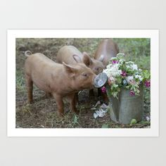 Edible Pig Decor Art Print by Post Road Vintage
