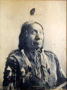 by Frank Albert Rinehart (American Feb. on Feb 2010 Native American Pictures, Native American History, Native American Indians, Sioux, Native Indian, Native Art, Red Cloud, Trail Of Tears, Rare Animals