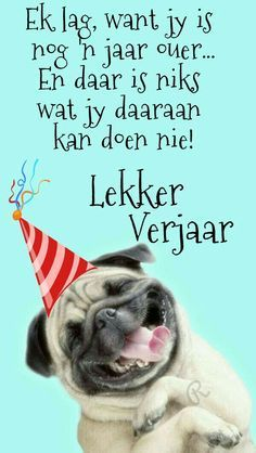 veels geluk verjaarsdag afrikaans man / veels geluk verjaarsdag afrikaans man _ veels geluk verjaarsdag afrikaans man snaaks _ veels geluk verjaarsdag afrikaans my man Free Happy Birthday Cards, Happy Birthday For Him, 21st Birthday Cards, Happy Birthday Pictures, Happy Birthday Greetings, Birthday Msgs, Birthday Wishes Funny, Birthday Wishes Quotes, Birthday Messages