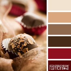 Color Palette: Cranberry, Chocolate and Tan. If you like our color inspiration, sign up for our monthly trend letter here: http://patternpod.us4.list-manage.com/subscribe?u=524b0f0b9b67105d05d0db16a&id=f8d394f1bb&utm_content=buffer847d9&utm_medium=social&utm_source=pinterest.com&utm_campaign=buffer