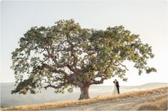 coastsidecouture.com | Holman Ranch | Carlie Statsky Photography | Coastside Couture Weddings and Events
