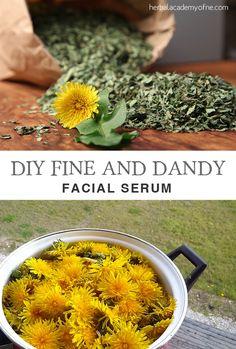 DIY Dandelion Facial Serum