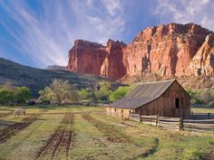 The old town of Fruita in Capitol Reef National Park, Utah.  The park service still uses the fields and orchards here.