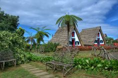 Traditional Palheiros House in Santana Madeira #portugal #madeira #madeiratrip #island #santana #traditional #palheiros #house #old #architecture #travel #nikon #nikon7000 #nikonphotography