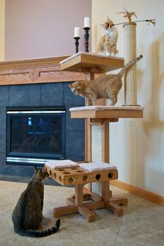 The Cat Power Tower - The Tower That Keeps Your Cat Mentally and Physically Active!