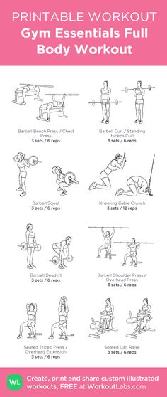 Gym Essentials Full Body Workout:my visual workout created at WorkoutLabs.com • Click through to customize and download as a FREE PDF! #customworkout