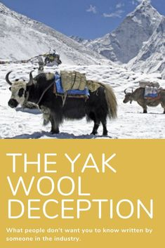 How the yak wool industry traders deceive their customers. How to avoid getting 'stung' when you want to purchase something labelled yak wool. Scribble, Wool, Writing, Clothes, Outfits, Clothing, Clothing Apparel, Doodles, Kleding
