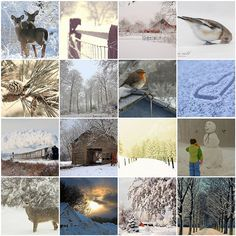 Even though I do not love winter except during the holiday season, this collage does speak to me...