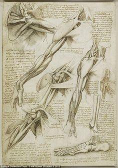 Leonardo da Vinci's drawings: 100s of years ahead of his time !!