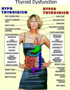 Hyper/HypoThyroidism  (thought this was good info to keep)