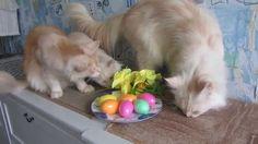 Happy Easter.С Праздником Пасхи.