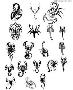 13382-tribal-scorpion-tattoo-designs-tattoos10-tattoo-design-694x865 ...