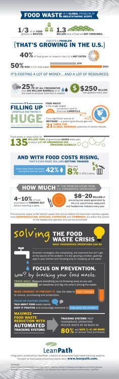 Food Waste Is A Global Problem Of Breathtaking Scope #INFOGRAPHIC (Reduce Food Waste)