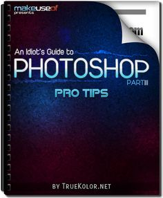 An Idiot's Guide to Photoshop, free download
