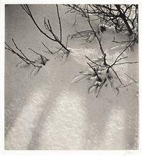 jan lauschmann Snow, Outdoor, Musical Composition, Still Life, Outdoors, Outdoor Games, Outdoor Life, Human Eye