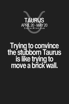Taurus Quotes, Zodiac Signs Taurus, Taurus Facts, Zodiac Mind, Zodiac Star Signs, Zodiac Quotes, Zodiac Facts, Taurus Memes, Sun In Taurus