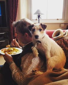 Parson Russell Terriers always have your back; especially when there's food involved.