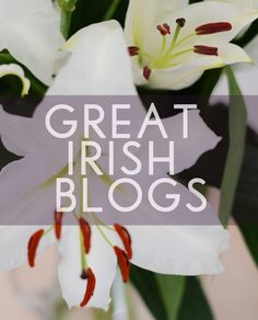 Great Irish blogs, list made by From China Village. Enjoy the read, they are indeed great blogs.