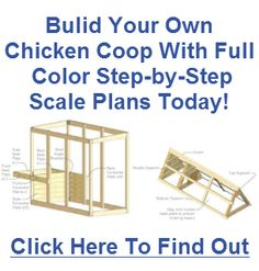 Chicken Coop Plans 2