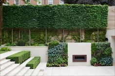 With a beautifully-framed lawn and pleached-tree boundary, this garden works as a magical link between the main house and the mews accommodation. To the lower terrace, the retractable glass wall of the house opens out onto an outdoor drawing-room, complete with fireplace and homely, lush green walls. The formal steps to the lawn are bordered by smartly-clipped Buxus hedging and a grouping of sentry-like Carpinus frame the beautiful lantern bay window in the mews accommodation.